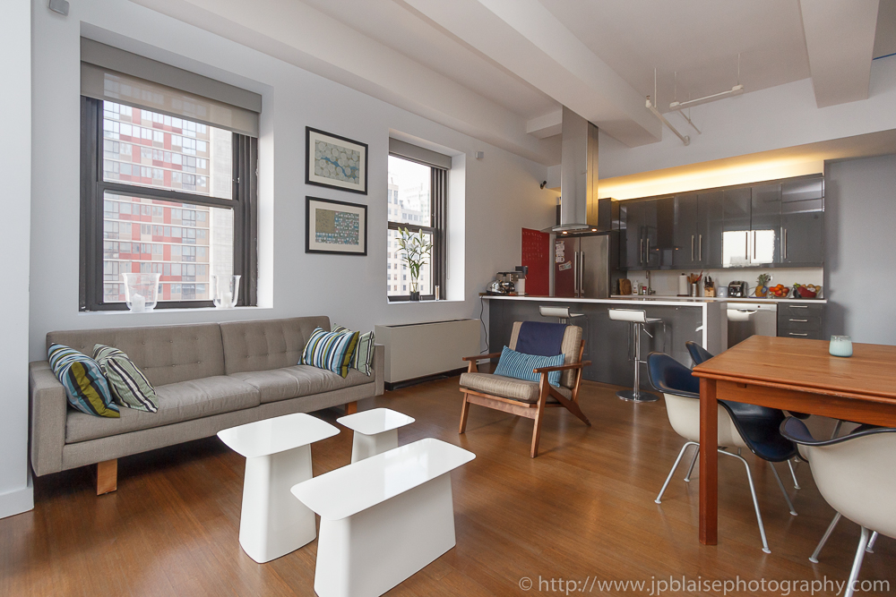 Apartment photographer work in new york city, picture of living room in downtown Brooklyn