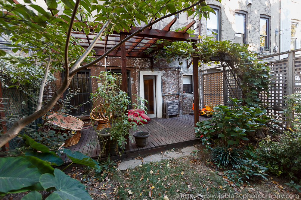Photography of garden of 3 bedroom apartment in Crown Heights, Brooklyn
