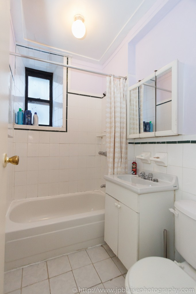 bathroom of east williamsburg apartment photoshoot